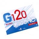 CARTELLA DISEGNO G120 33X48 FG.10 RUVIDO